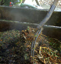 compost, conpost testing,